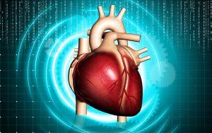 Сердечные заболевания список названий