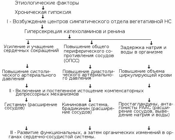 Гипертоническая болезнь классификация и симптомы