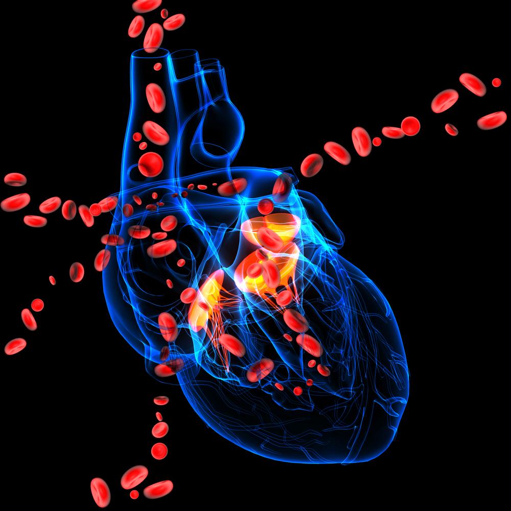 Может ли порок сердца быть приобретенным