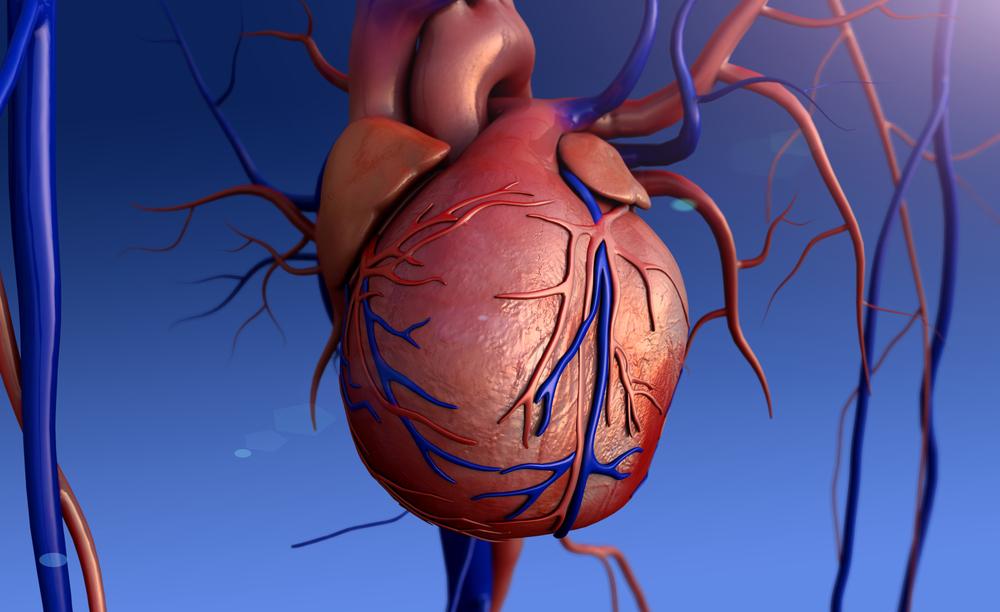 Миксома сердца что это такое симптомы и прогноз жизнь после удаления