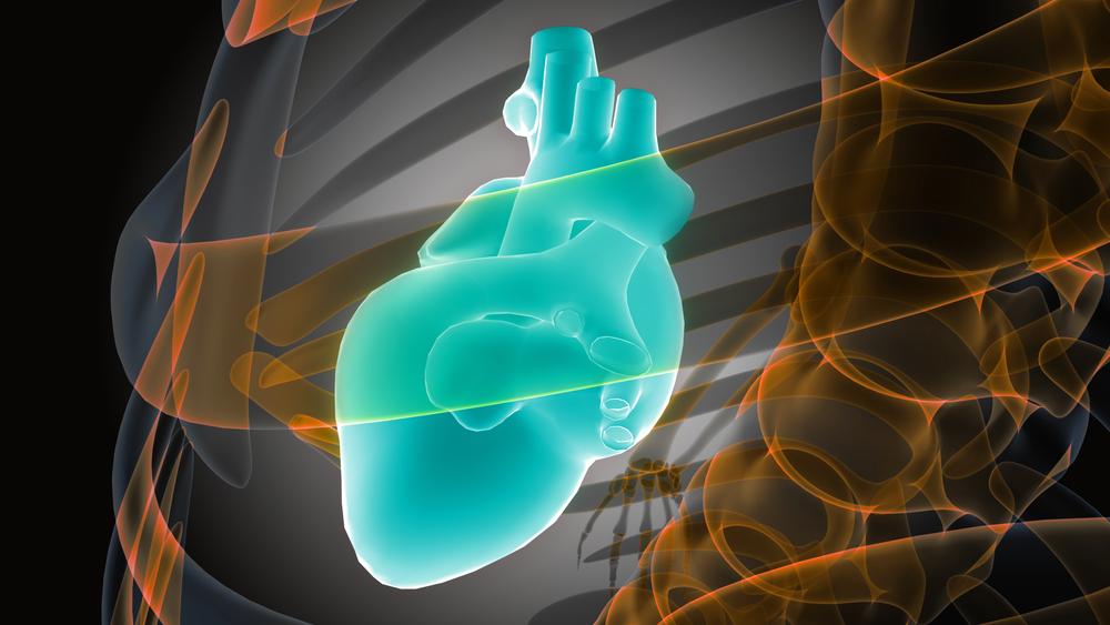 Обзор исследования сцинтиграфия сердца, показания и противопоказания к нему