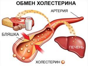 Как снизить холестерин народными средствами