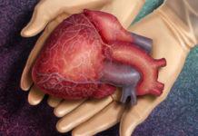 Впервые в мире проведена трансплантация умершего сердца